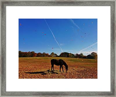 Horse Farm In The Fall Framed Print by Ed Sweeney