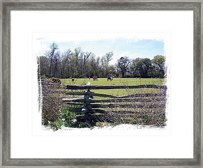 Horse Farm Framed Print by Ralph  Perdomo