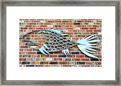 Fish Shoe  Framed Print