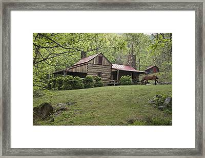 Horse Grazing In The Yard Of A Mountain Framed Print