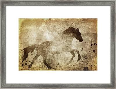 Horse Grunge Framed Print by Dan Sproul