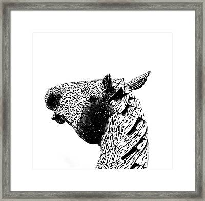 Horse Head. Framed Print by Angela Aird