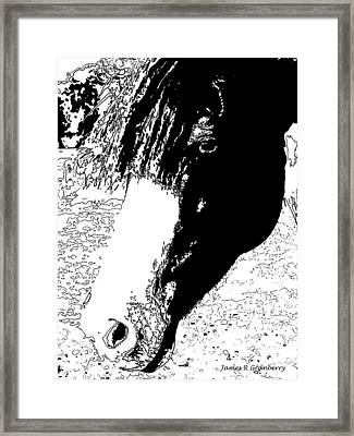 Horse Head Framed Print by James Granberry