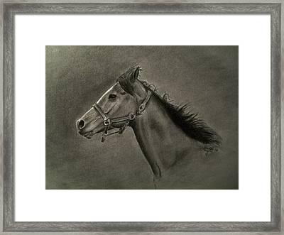 Horse Head Framed Print by Michael Trujillo
