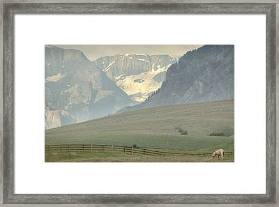 Horse Heaven.. Framed Print by Al  Swasey