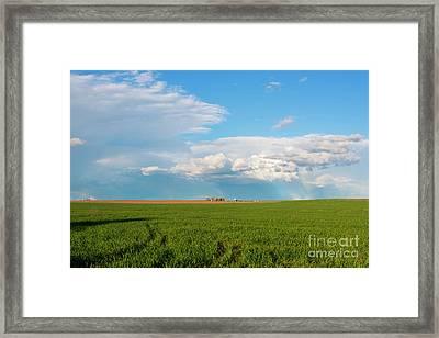 Horse Heaven Storm Framed Print