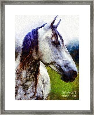 Horse I Dream Of You Framed Print