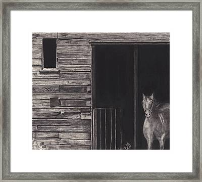 Horse In Barn Framed Print