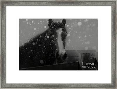Horse In Falling Snow Framed Print by J M Lister