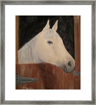 Horse In Stall Framed Print