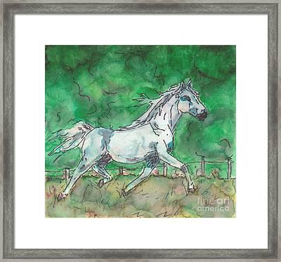 Horse Framed Print by Jennifer Gonzalez