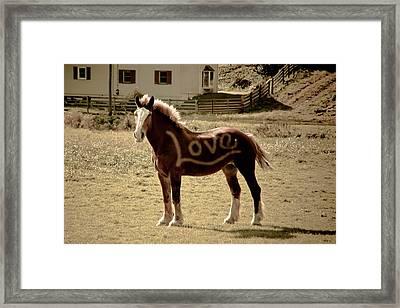 Horse Love Framed Print by Trish Tritz