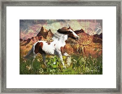 Horse Medicine 2015 Framed Print