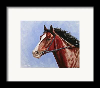 Blood Bay Horse Framed Prints