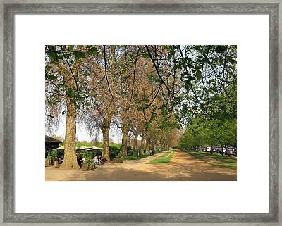 Horse Path Framed Print by David L Griffin