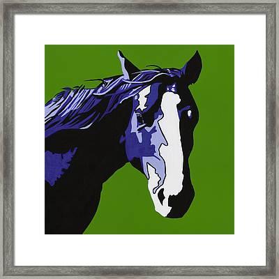 Horse Play Blue Framed Print by Sonja Olson