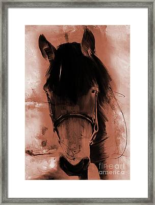 Horse Portrait 02o Framed Print by Gull G