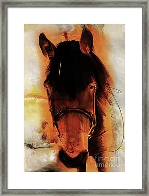 Horse Portrait 02p Framed Print by Gull G