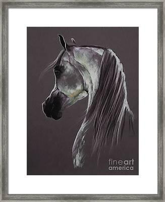 Horse Portrait 0321a Framed Print by Gull G
