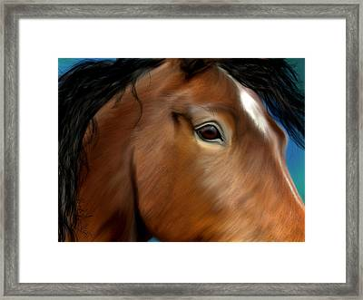 Horse Portrait Close Up Framed Print