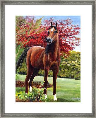 Horse Portrait Framed Print by Eileen  Fong