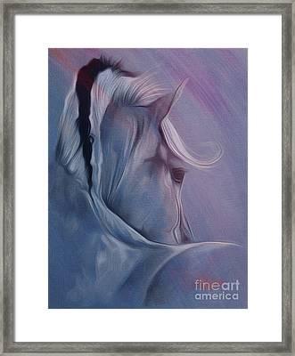 Horse Portrait From Backside 01  Framed Print by Gull G