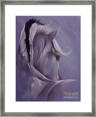 Horse Portrait From Backside  Framed Print by Gull G
