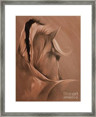 Horse Portrait From The Back 03 Framed Print by Gull G