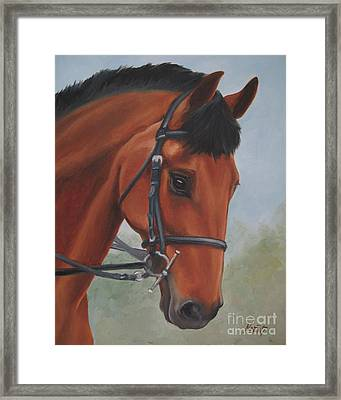 Framed Print featuring the painting Horse Portrait by Jindra Noewi