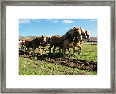 Framed Print featuring the photograph Horse Power by Jeff Swan