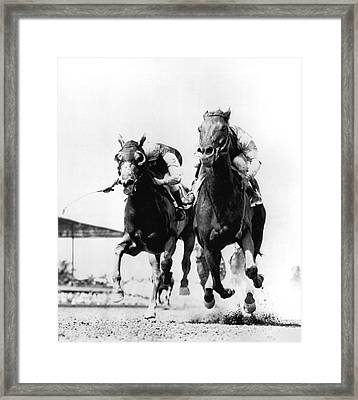 Horse Race At Gulfstream Track Framed Print by Underwood Archives