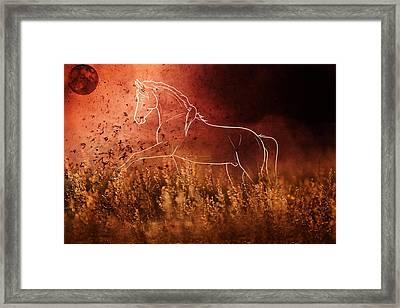 Horse Running In Field Framed Print