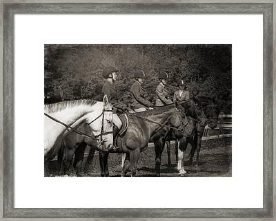 Horse Sense Framed Print by JAMART Photography