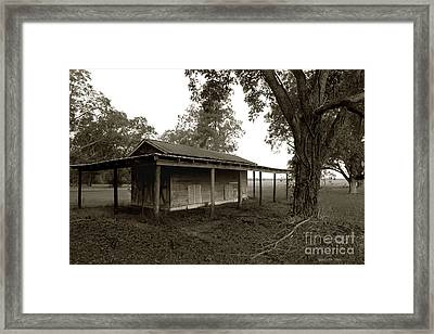 Framed Print featuring the photograph Horse Shelter by Joseph G Holland