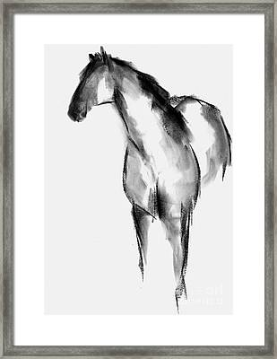 Horse Sketch Framed Print by Frances Marino