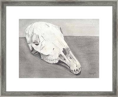 Horse Skull Framed Print by Mendy Pedersen