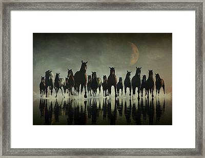 Horse Stampede In The Sea Framed Print