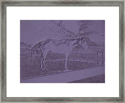 Horse Standing By The Fence 2 Framed Print by Lanjee Chee
