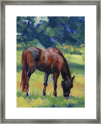 Horse Study No.40 Framed Print by Tracy Wall