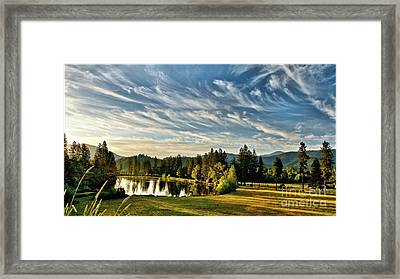 Horse Tail Heaven Framed Print