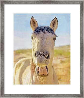 Horse Talk #2  Framed Print