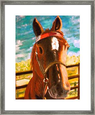 Horse Tommy Framed Print by Jean-Marie Poisson