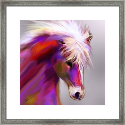 Horse True Colors Framed Print