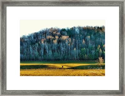 Horse Valley Framed Print by Anthony Djordjevic