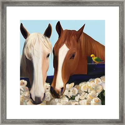 Horse Whispers  Framed Print