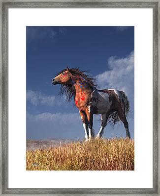 Horse With War Paint Framed Print by Daniel Eskridge