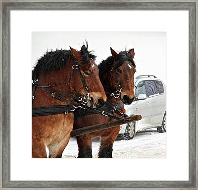 Horsepower Framed Print by Odd Jeppesen