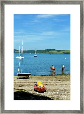 Horses At Restronguet Weir Framed Print by Terri Waters