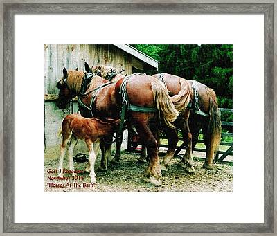 Horses At The Barn H A Framed Print