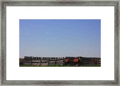 Horses - Corrals - And Alberta Prairie Sky Framed Print by Jim Sauchyn